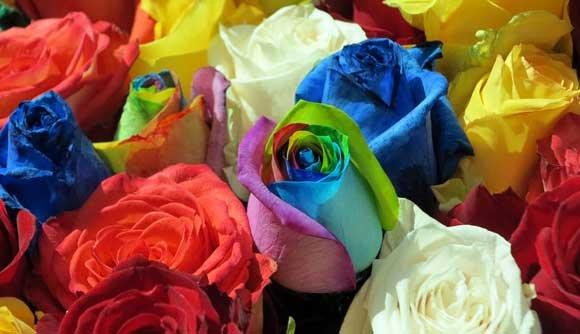 Svjetski sajam cvijeća u New Yorku