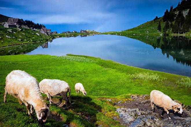 """Prokoško jezero: prebivalište """"Čovječje ribice"""""""