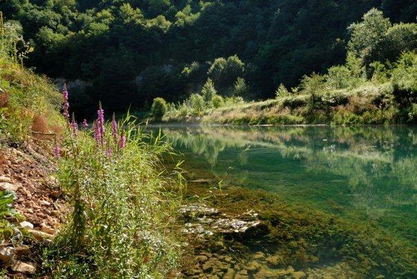 Prelijepo vrelo: Rijeka Krušnica