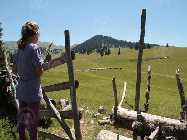 Porodica Fuško živi na vrhu planine Vlašić (1)