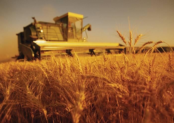 Poljoprivreda: 100 miliona KM podsticaja