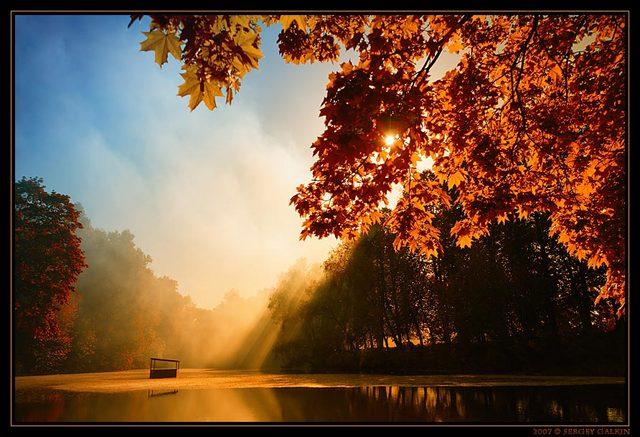 Stvari o jeseni koje možda niste znali