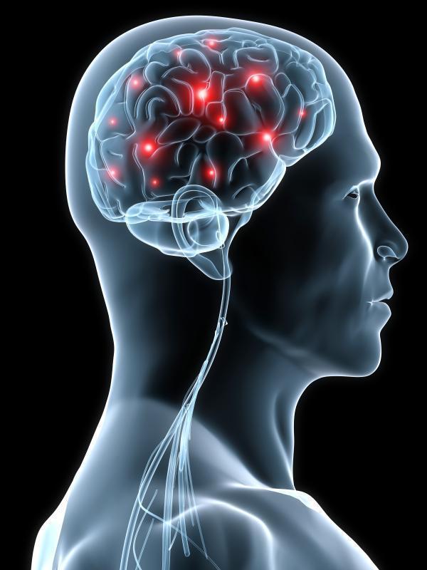 Mozak izuzetnom brzinom sprema podatke iz našega života