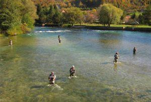 Međunarodno takmičenje u mušičarenju – flyfishingu