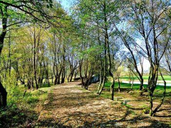 Foto: Ilidža u Jesen