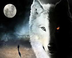 Onaj vuk, kojeg nahraniš, on će uvijek pobijediti