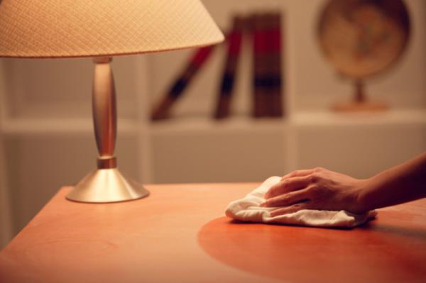 Pet Vrlo Jednostavnih Trikova Da Se Izborite Sa Prašinom