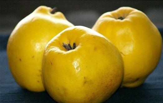 Dunja – blagotvorno voće