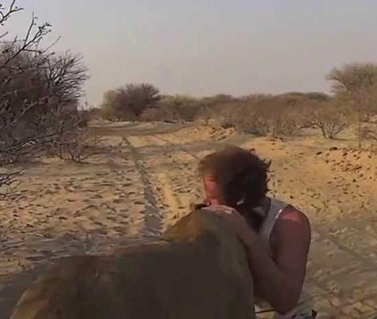 Video: Nevjerovatna veza lavice i momaka koji su je spasili sigurne smrti