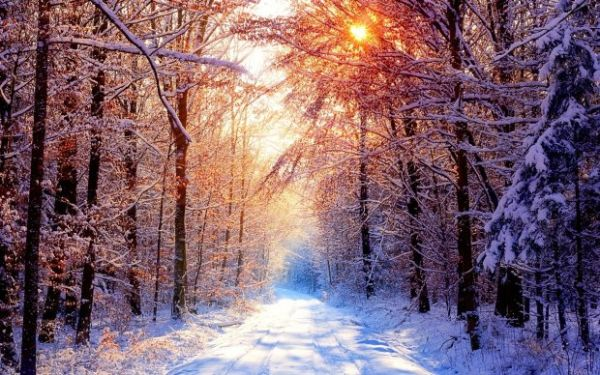 Danas je prvi dan Zime :)