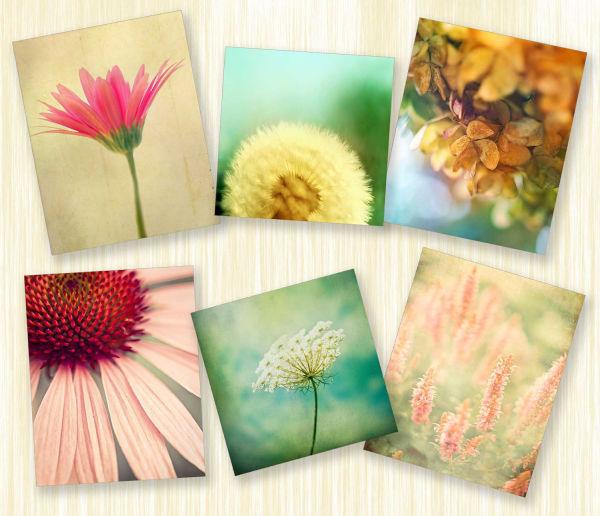 Život nije crno-bijela slika: Cvijetni dezeni