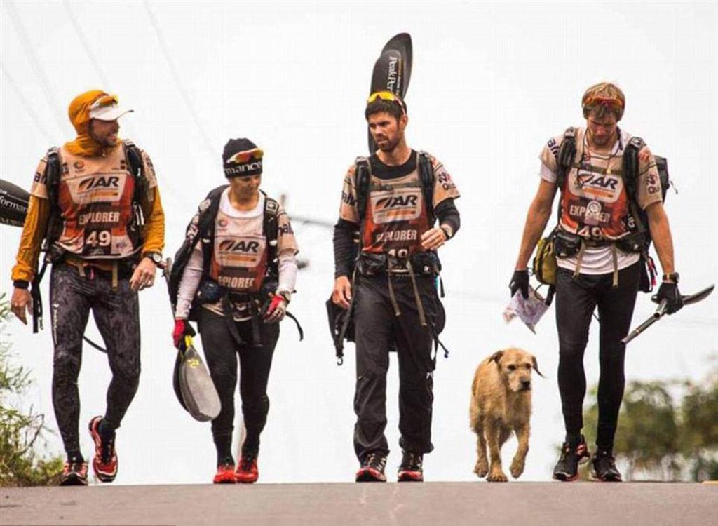 Pas prešao 690 kilometara da nađe bolji dom: Ova priča rastopit će i najtvrđe srce