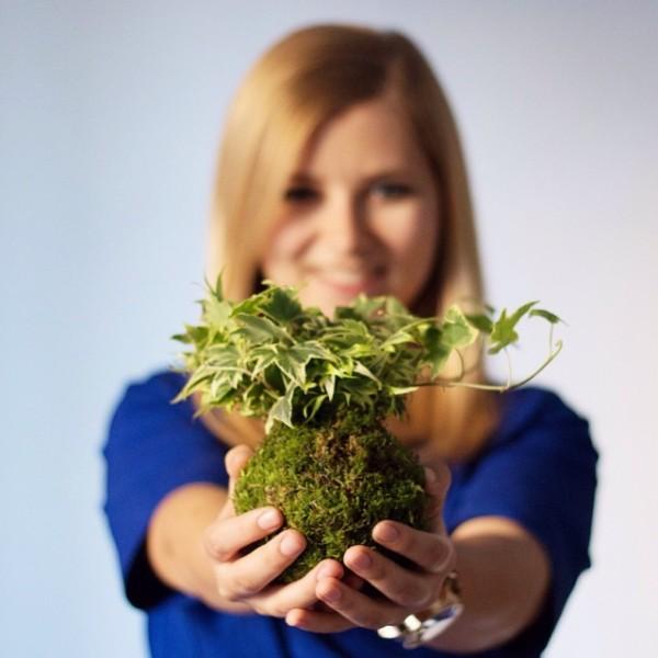 Kreativne ideje za biljke posebno za one koji nemaju vrt ili veliki balkon