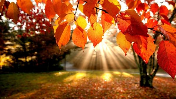Ovo su razlozi zašto je putovanje na jesen sjajna stvar