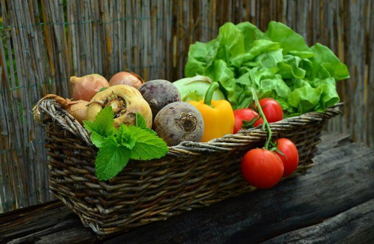 5 razoga zašto bi trebali da počnete konzumirati organsku hranu