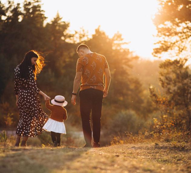 Priprema za roditeljsvo: Razvoj roditelja